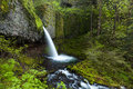 Upper Ponytail Falls In Columbia River Gorge, Oregon Stock Photo - 51170260