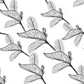 Leaves Contours On White Background. Floral Seamless Pattern, Hand-drawn. Vector Stock Photo - 51170430