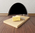 Mousetrap Near Mouse Hole Royalty Free Stock Images - 51180879