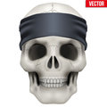 Vector Human Skull With Gangster Bandana On Head Stock Photos - 51199683