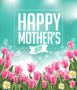 Happy Mothers Day Tulips Design EPS 10 Vector Royalty Free Stock Photography - 51233027