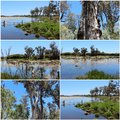 Collage Of The Lake At Malbup In Tuart National Park  Near Busselton West Australia. Royalty Free Stock Image - 51263146