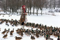 Girl Feeds A Lot Of Ducks Royalty Free Stock Images - 51306379