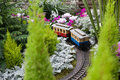 Toy Train Surrounded By Conservatory Christmas Royalty Free Stock Photo - 51388435