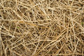 Closeup Of A Haystack Stock Images - 5148114