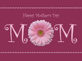 Happy Mother S Day Mom Card With Soft Pink Gerbera Daisy And Pearl Background Stock Photography - 51453002