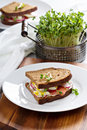 Sandwich With Smoked Salmon, Radishes And Egg Stock Photos - 51493933