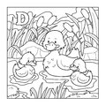 Coloring Book (duck), Colorless Illustration (letter D) Royalty Free Stock Photography - 51506307