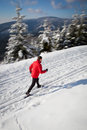 Young Man Cross-country Skiing Stock Photo - 51624190