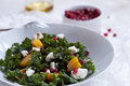 Beet, Goat Cheese And Pomegranate Salad With Seeds Royalty Free Stock Photos - 51629048