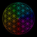 Rainbow Flower Of Life Royalty Free Stock Images - 51630729
