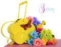 Spring Flowers And Watering Can Royalty Free Stock Photo - 51651315