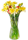 Yellow Daffodils And Freesias Flowers, Red Tulips In A Transparent Vase, Close Up, White Background, Isolated Stock Images - 51666864