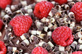 Red Raspberries And Chocolate Curls Royalty Free Stock Photography - 51671487