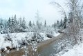 Small Winter Stream With Snowy Trees. Stock Images - 51676384