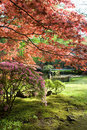 Spring In Park Royalty Free Stock Photography - 5179837