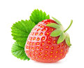 Strawberry Royalty Free Stock Images - 51740979