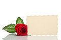 Red Rose And Gift Card For Text Stock Photography - 51845682