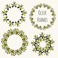 Olive Frames Hand Drawn Set. Vector Label Design Collection Royalty Free Stock Image - 51854116