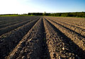 Ploughed Field  Royalty Free Stock Image - 5192316