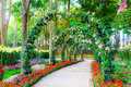 Beautiful Flower Arches With Walkway In Ornamental Plants Garden Stock Photos - 51957723