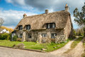 Dorset Thatched Cottage Royalty Free Stock Photo - 51982625