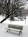 Winter Bench 1 Stock Image - 524751