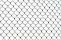 Wire Netting Stock Images - 524984