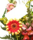 Card And Flowers Royalty Free Stock Photography - 5210067