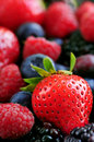 Assorted Fresh Berries Royalty Free Stock Photos - 5223278