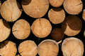 Pile Of Wood Stock Images - 5224324