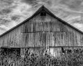 Abandoned Barn Royalty Free Stock Photo - 52211575