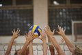 Volleyball Royalty Free Stock Photos - 52212888