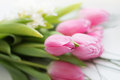 Bouquet Of Pink Tulips Royalty Free Stock Images - 52227149