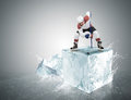 Ice Hockey Player On The Ice Cube During Face-off Royalty Free Stock Image - 52227486