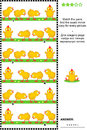 Visual Puzzle With Rows Of Cute Little Chicks Stock Photo - 52236630