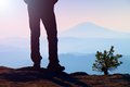 Man Hiker Legs In Tourist Boots Stand On Mountain Rocky Peak. Small Pine Bonsai. Stock Photography - 52252712