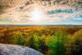Sunlight Over The Treetops In An Autumn Forest Royalty Free Stock Photography - 52383107