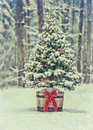 Snowy Christmas Tree With Colorful Lights In A Forest - Vintage Stock Photos - 52385493