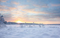 Sunset Over Snowy Lake Stock Image - 52401901