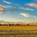 Hay Rolls And Harvested Field At Sunset. Tuscany Stock Photo - 52435390