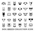 Breed Dog Collection Icon, Vector Royalty Free Stock Image - 52474796