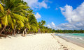Caribbean Beach In Dominican Republic Stock Images - 52479054