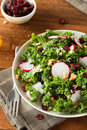 Healthy Raw Kale And Cranberry Salad Stock Photography - 52491022