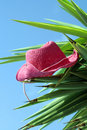 Hat On The Palm Stock Photos - 5255143