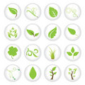 Green Icon Set Stock Images - 5258474