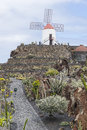 Cactus Garden In Lanzarote Royalty Free Stock Image - 52530856