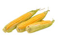 An Ear Of Corn Stock Images - 52691844