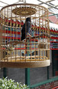 Bird In The Cage. Stock Photography - 5275292