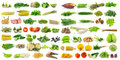 Vegetable Isolated On A White Background Stock Photo - 52724600